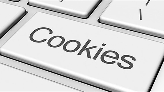 Privacy e Cookies