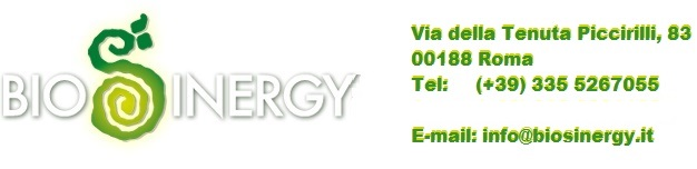 logo biosinergy web